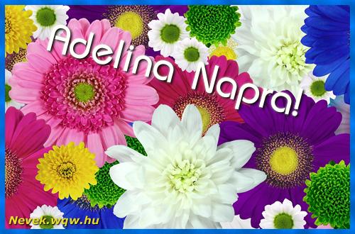 Színes virágok Adelina névnapra