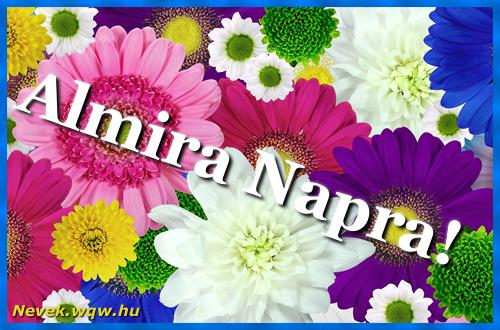 Színes virágok Almira névnapra