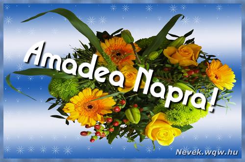Amadea névnapi képeslap