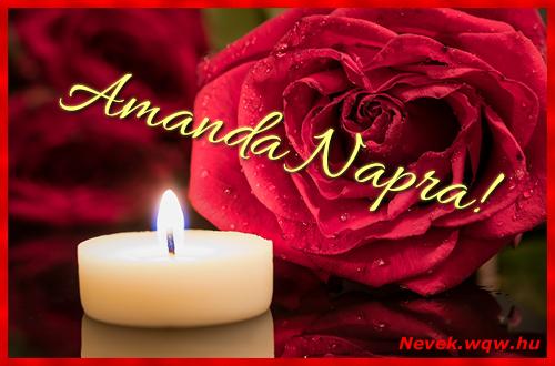 Amanda képeslap
