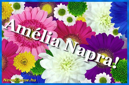 Színes virágok Amélia névnapra