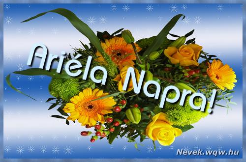 Ariéla névnapi képeslap