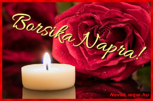 Borsika képeslap