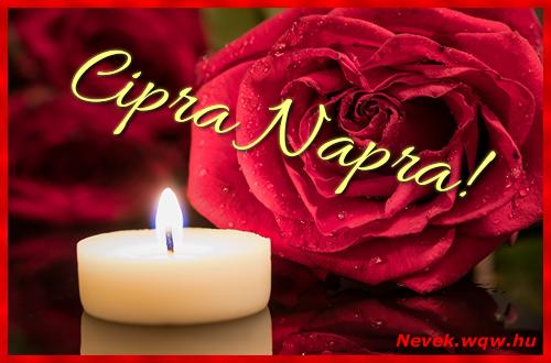 Cipra képeslap