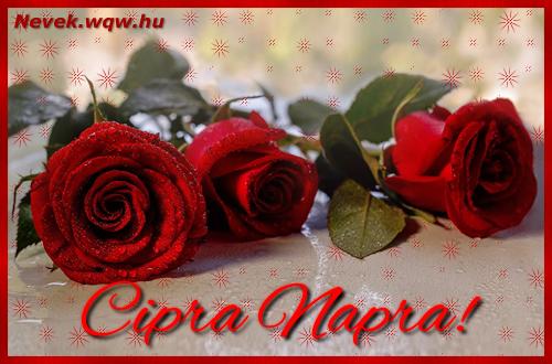 Névre szóló képeslap Cipra napra