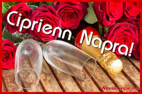 Ciprienn üdvözlőlap
