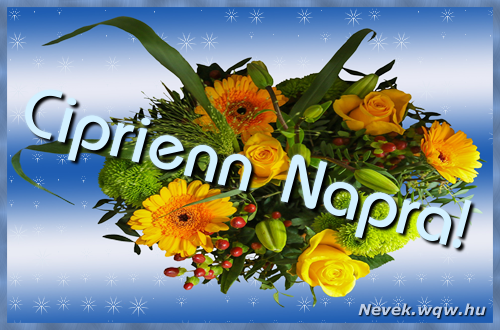Ciprienn névnapi képeslap