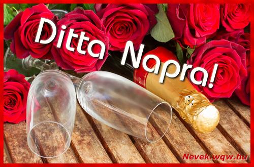 Ditta üdvözlőlap