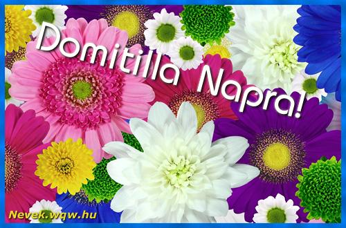 Színes virágok Domitilla névnapra