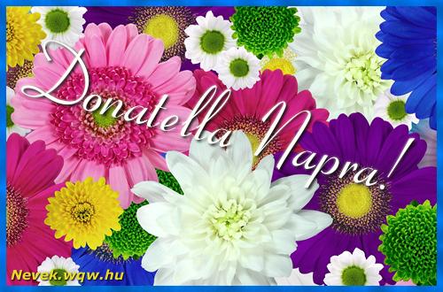 Színes virágok Donatella névnapra