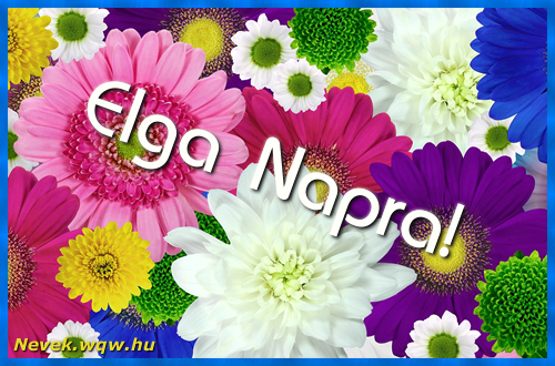 Színes virágok Elga névnapra