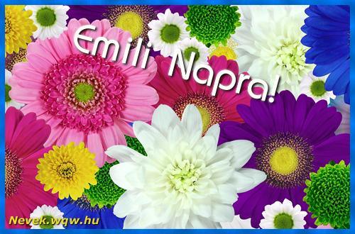 Színes virágok Emili névnapra