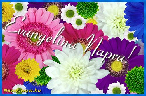 Színes virágok Evangelina névnapra