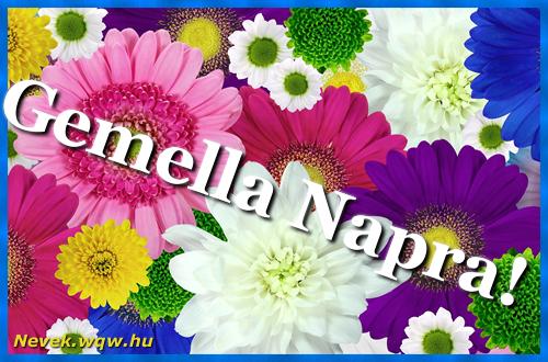 Színes virágok Gemella névnapra