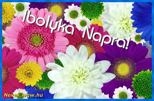 Színes virágok Ibolyka névnapra