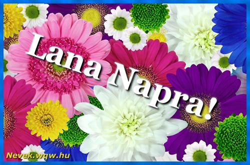 Színes virágok Lana névnapra