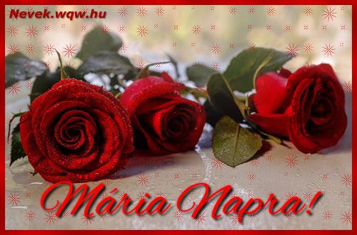 Névre szóló képeslap Mária napra