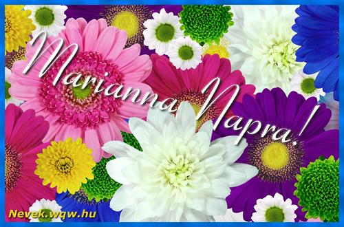 Színes virágok Marianna névnapra