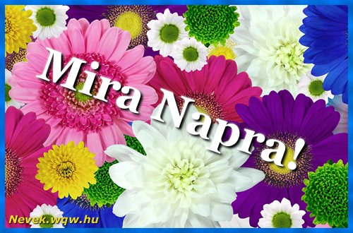 Színes virágok Mira névnapra