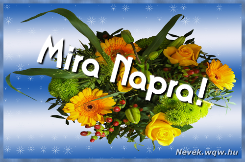 Mira névnapi képeslap