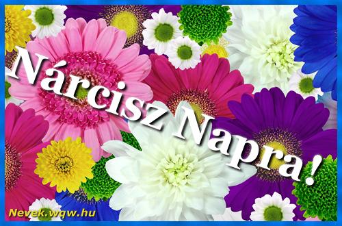 Színes virágok Nárcisz névnapra