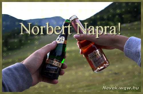 boldog névnapot norbert Norbert képeslap   Nevek boldog névnapot norbert