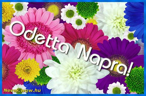 Színes virágok Odetta névnapra