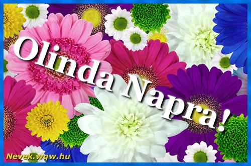 Színes virágok Olinda névnapra