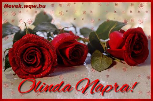 Névre szóló képeslap Olinda napra