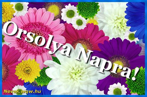Színes virágok Orsolya névnapra