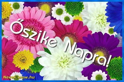 Színes virágok Őszike névnapra
