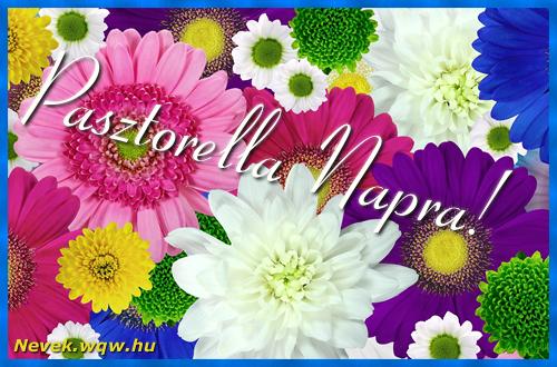 Színes virágok Pasztorella névnapra