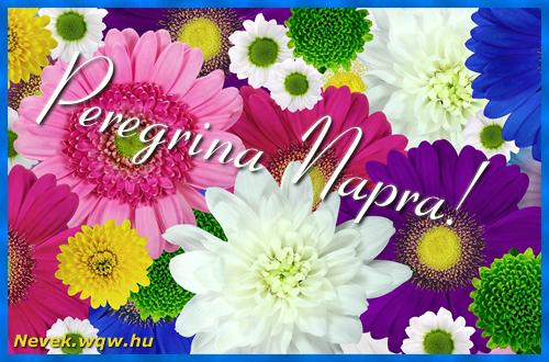 Színes virágok Peregrina névnapra