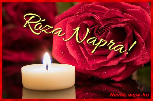 Róza képeslap