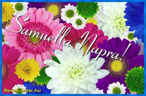 Színes virágok Samuella névnapra