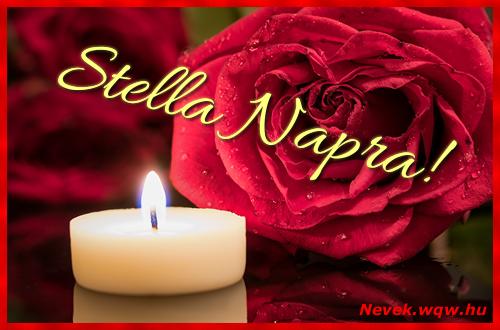 Stella képeslap