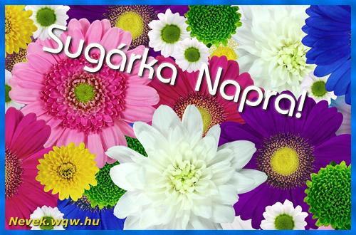 Színes virágok Sugárka névnapra
