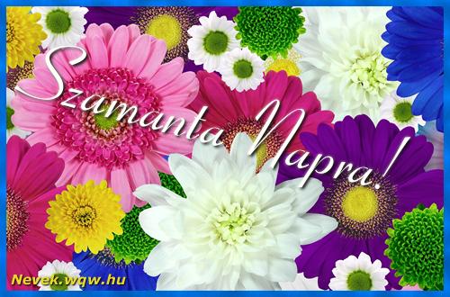 Színes virágok Szamanta névnapra