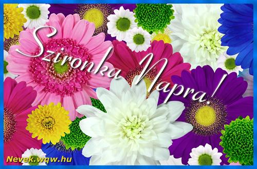 Színes virágok Szironka névnapra