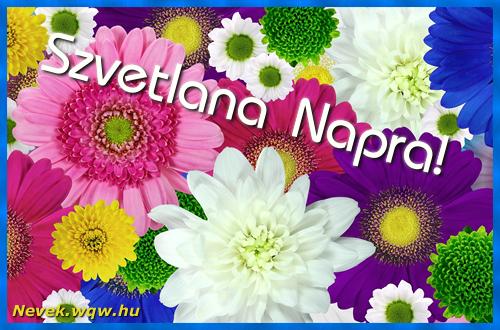 Színes virágok Szvetlana névnapra