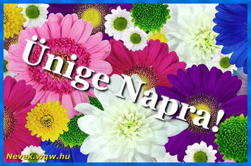 Színes virágok Ünige névnapra