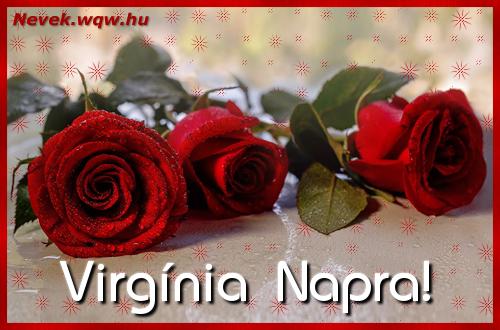 Névre szóló képeslap Virgínia napra